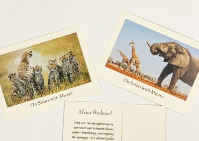 Postcards Printing nyc for Micato Safari