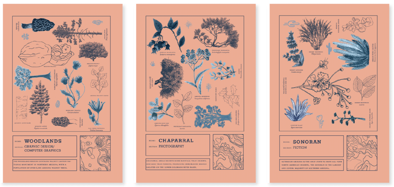 Print Design Scholarship Submission - The Traveler 2020 Art